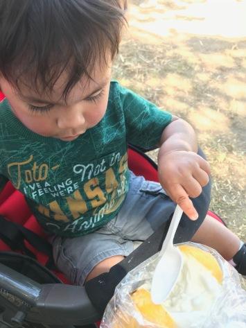 Lemon ice cream...in a lemon!
